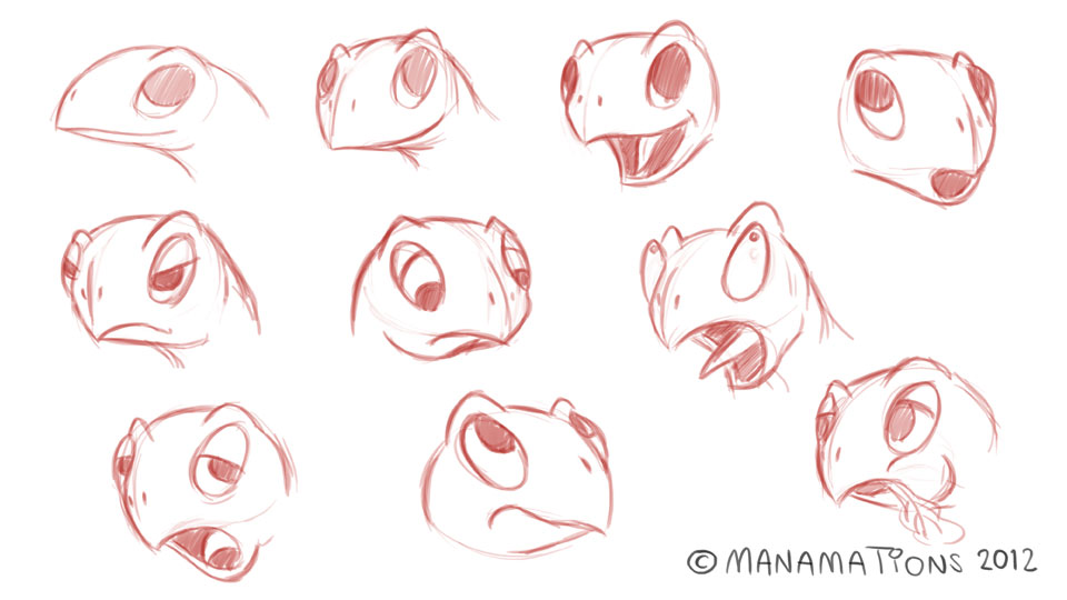 Tortoise Facial Expressions